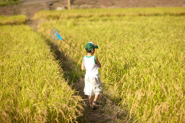 幼少の頃・・・自然にふれる経験